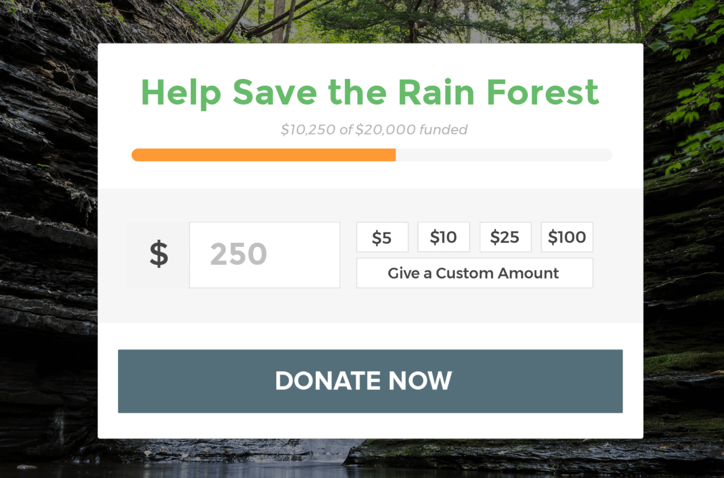 An example of how the funding goal and current donations can be displayed.