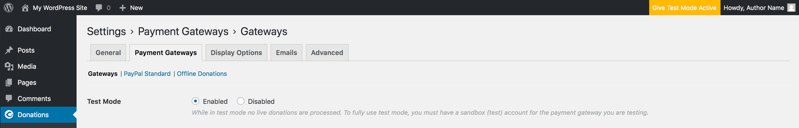 The Test Mode settings in Give.